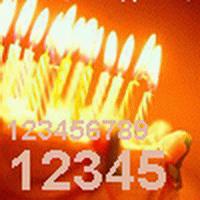 Число Даты Рождения.